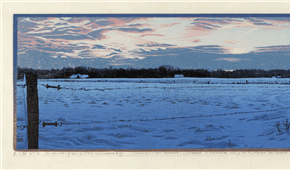 Dwingelder Es. Winter 2012. colour woodcut march-may 2014. 16 x 87 cm. ©siemendijkstra2014