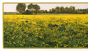 Ode to  this dandelions field. colourwoodcut 18x91cm 2011. ©siemendijkstra2014.
