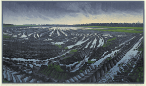 Devastaded field no.3. colour woodcut. 50x85cm 2008. ©siemendijkstra2014.